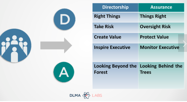 отличия между Directorship и Assurance